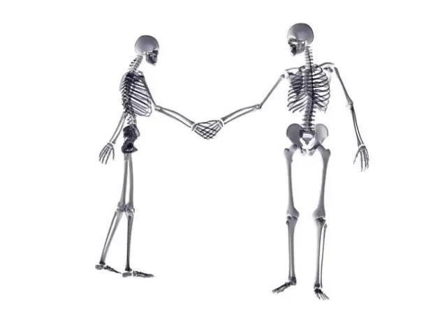 用X线片演绎的爱情故事