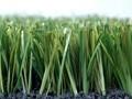 奥运会上的中国绿色产品节能环保 国内市场仍待开发(图)