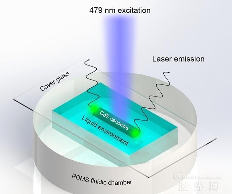 基于半导体纳米线激光器的折射率感测