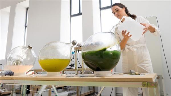 设计师利用藻类植物作为原材料 制造环保3D打印耗材