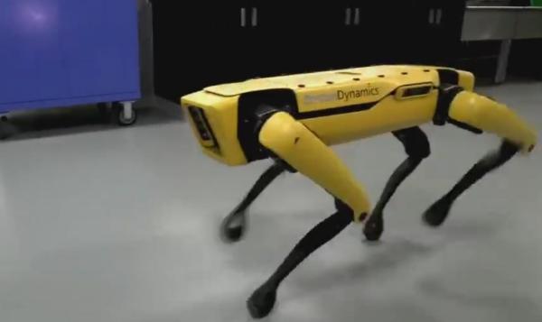 """波士顿动力公司最新成果:机器狗能协同工作,还会""""高智商""""开门"""