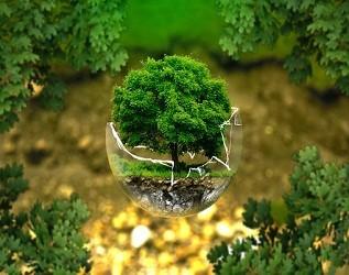 探索四种模式引领农业废弃物资源化利用